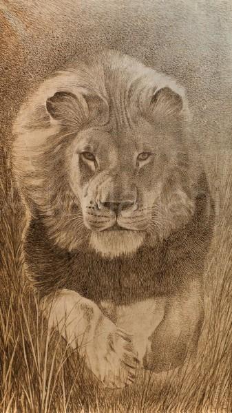 Tutta la bellezza del leone in un giclée ArteMariani
